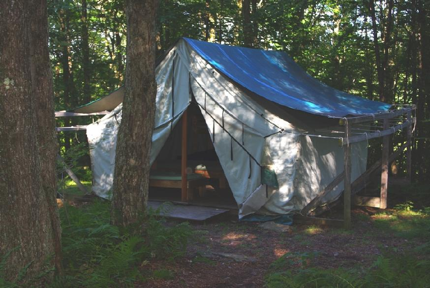 874_maples_right_tent_close